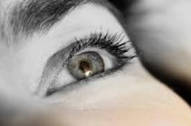 brow and lash restoration possibilities